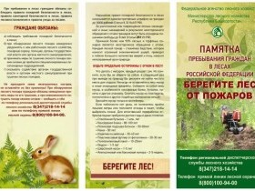 Памятка пребывания граждан в лесах РФ